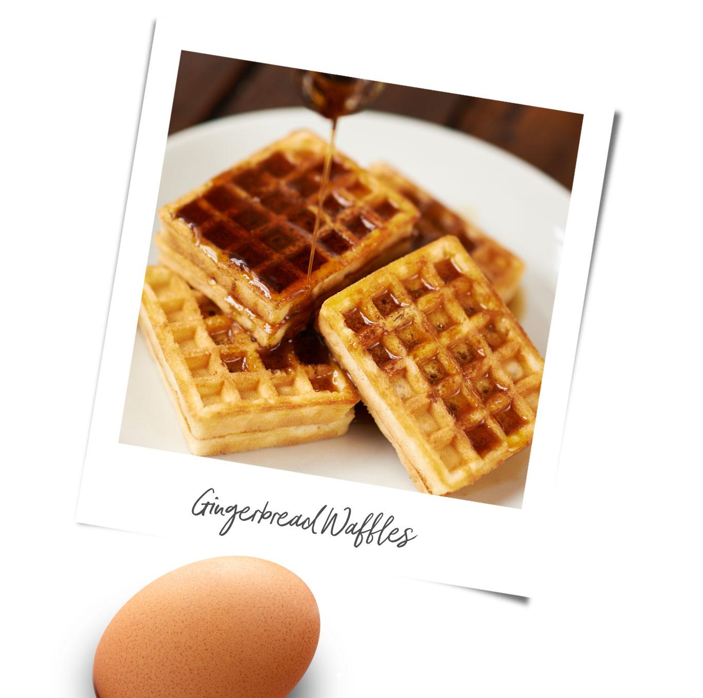 Gingerbread waffles recipe polaroid